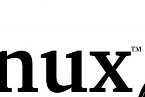 EtxESzqj-linux